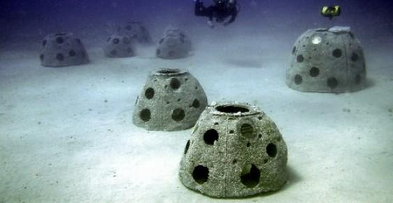 reef artificiale